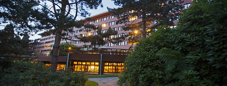 Hotel Special Disneyland Paris: Golden Forest Club in Disney's Sequoia Lodge