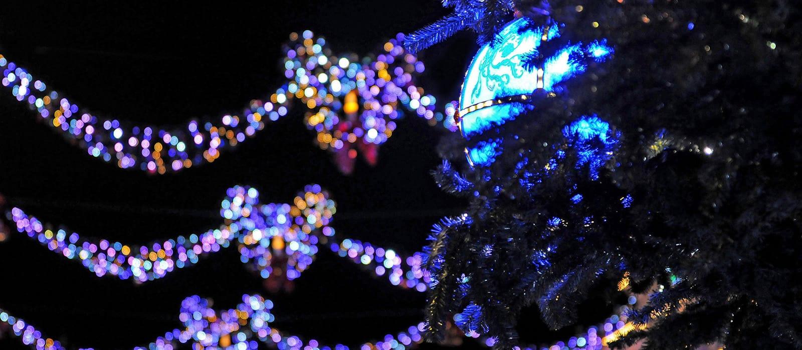 Betoverende Kerst <br> in Disneyland Paris